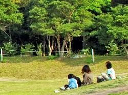 县民的森4